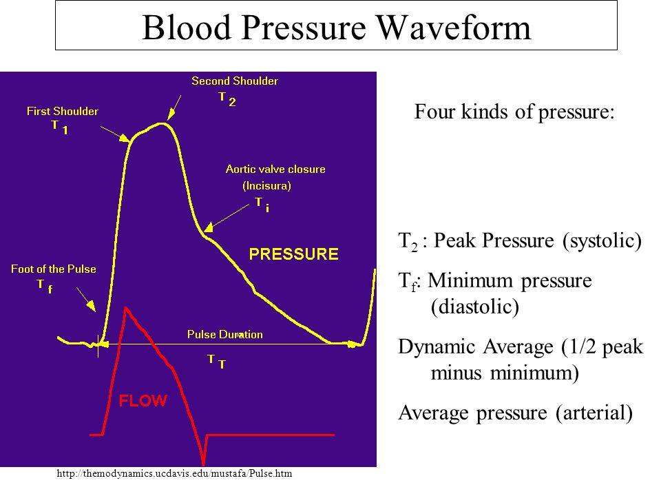 Blood Pressure Waveform