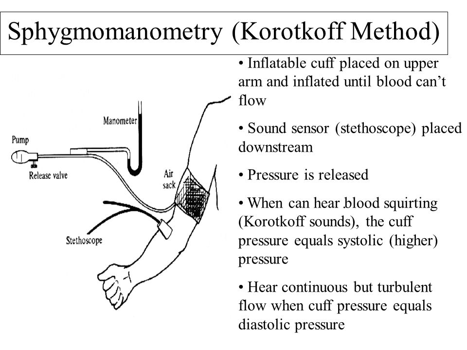 Sphygmomanometry (Korotkoff Method)
