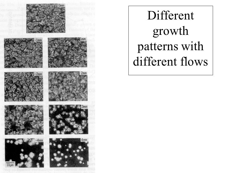 Different growth patterns with different flows