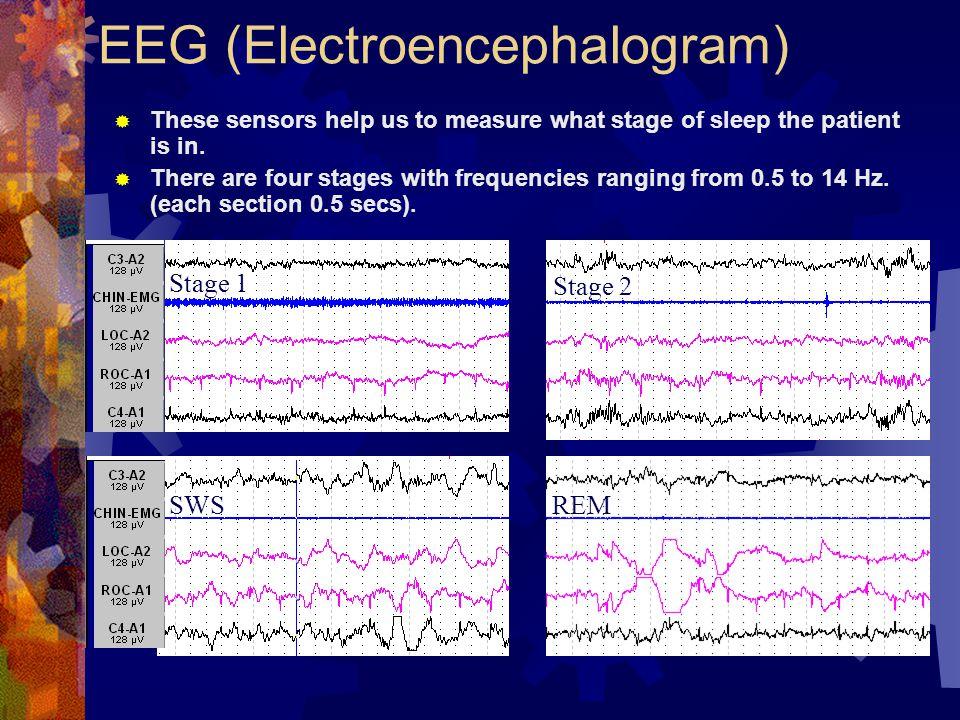 EEG (Electroencephalogram)