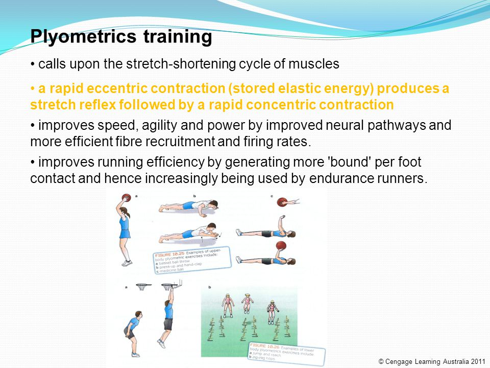 Plyometrics training calls upon the stretch-shortening cycle of muscles.