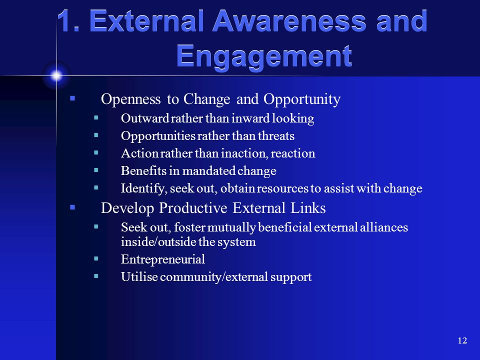 1. External Awareness and Engagement
