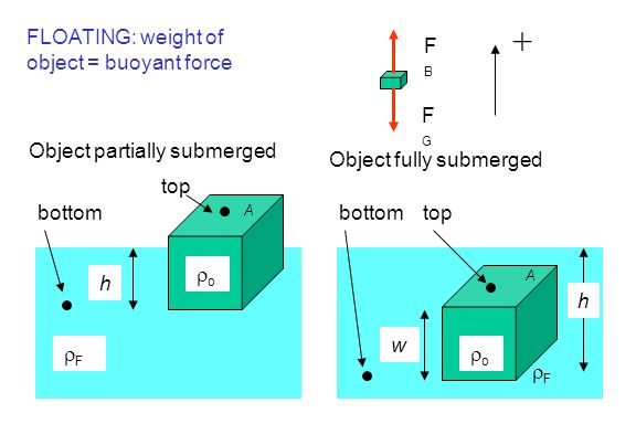 + FLOATING: weight of object = buoyant force FB FG