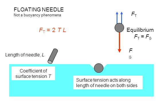 FT = 2 T L FLOATING NEEDLE FT Equilibrium FT = FG FG