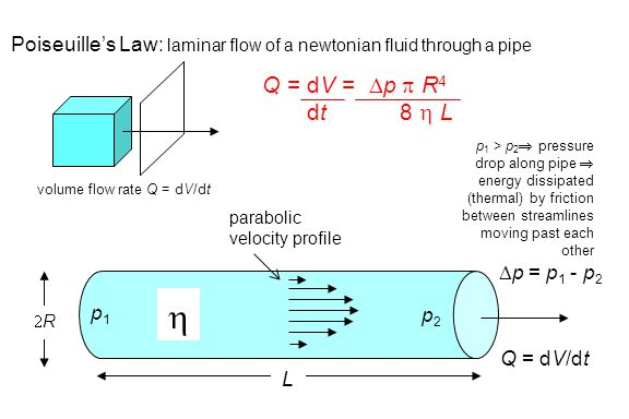 Poiseuille's Law: laminar flow of a newtonian fluid through a pipe