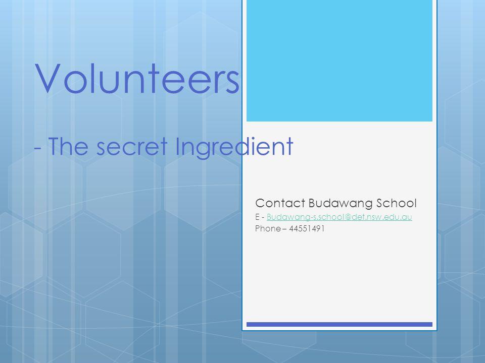 Volunteers - The secret Ingredient