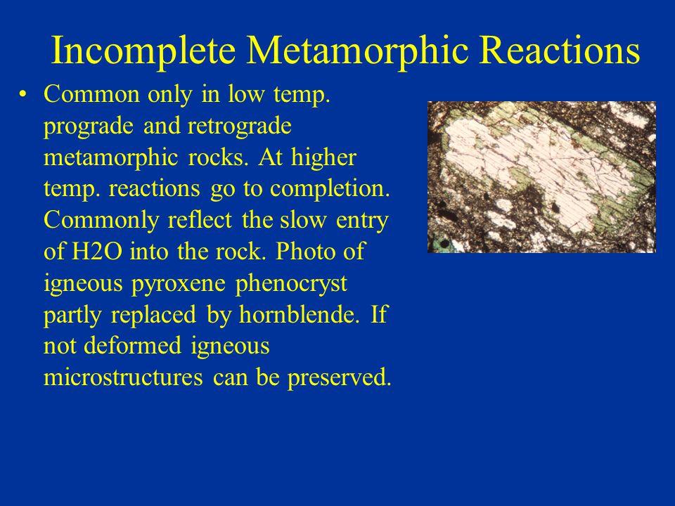 Incomplete Metamorphic Reactions