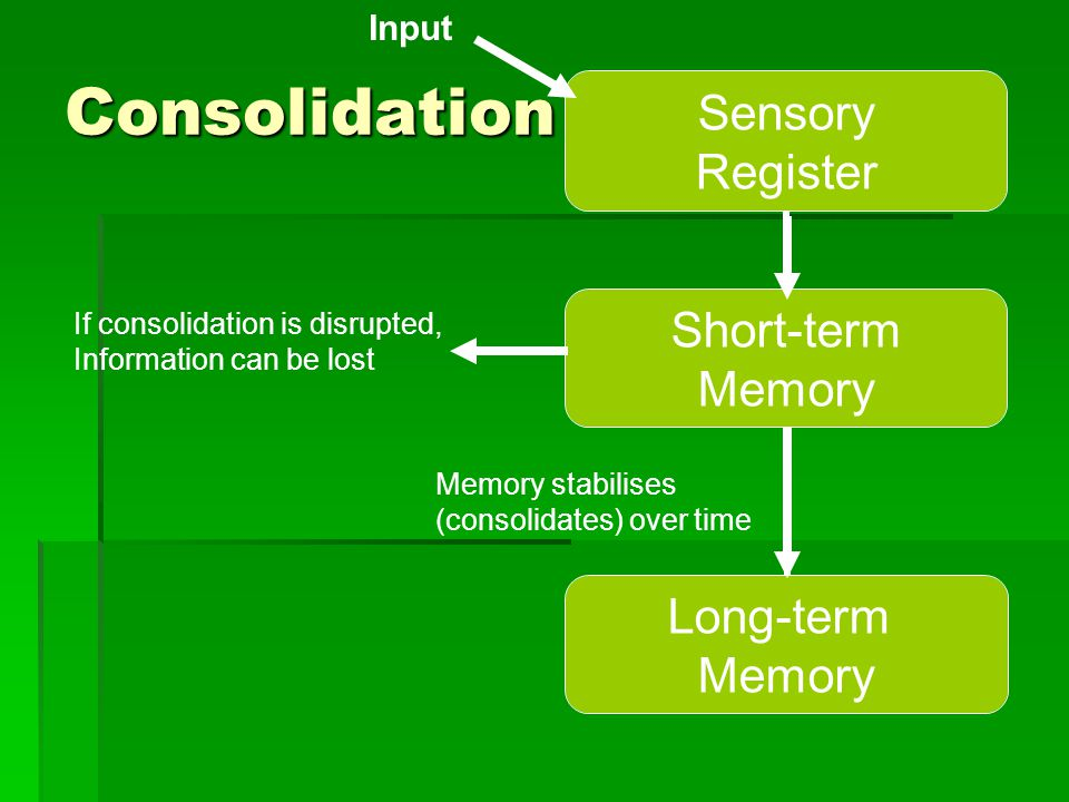 Input Consolidation. If consolidation is disrupted, Information can be lost.