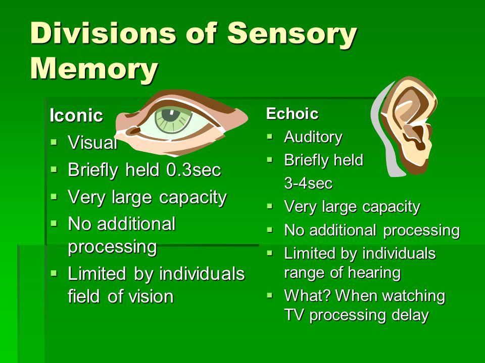 Divisions of Sensory Memory