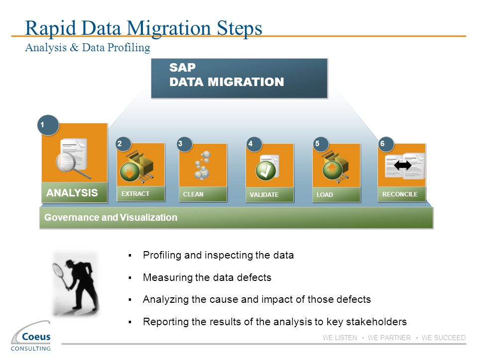 Rapid Data Migration Steps Analysis & Data Profiling