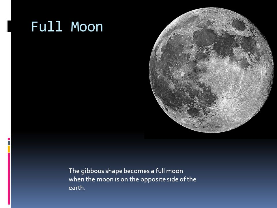 Full Moon The gibbous shape becomes a full moon when the moon is on the opposite side of the earth.