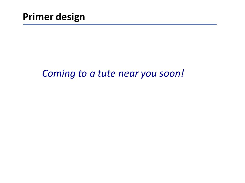 Primer design Coming to a tute near you soon!