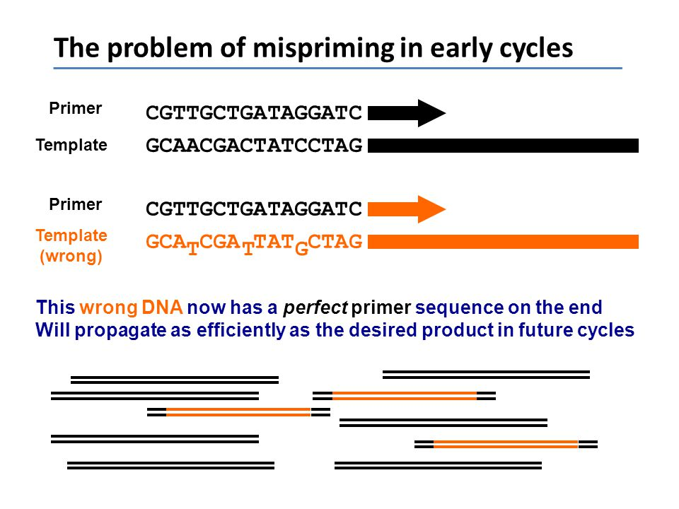 The problem of mispriming in early cycles
