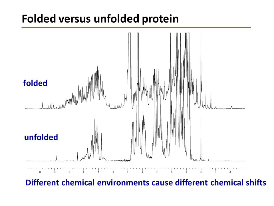 Folded versus unfolded protein
