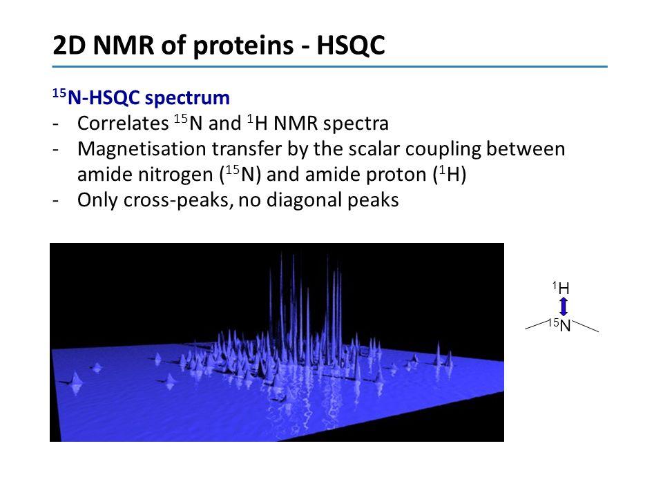 2D NMR of proteins - HSQC 15N-HSQC spectrum