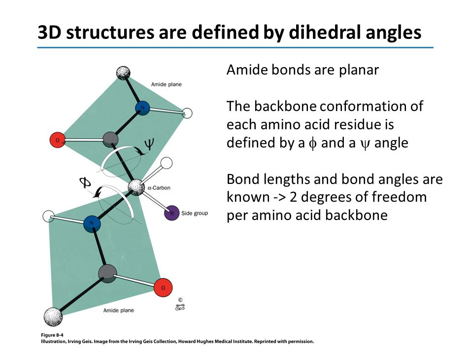 3D structures are defined by dihedral angles