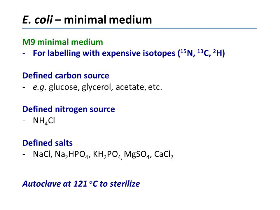 E. coli – minimal medium M9 minimal medium