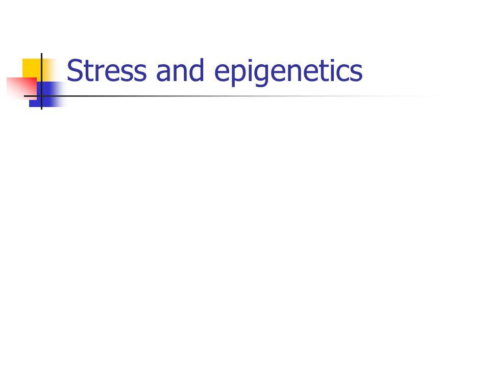 Stress and epigenetics