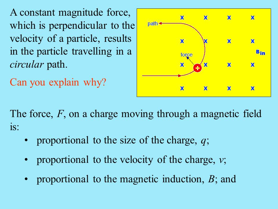 A constant magnitude force, which is perpendicular to the velocity of a particle, results in the particle travelling in a circular path.