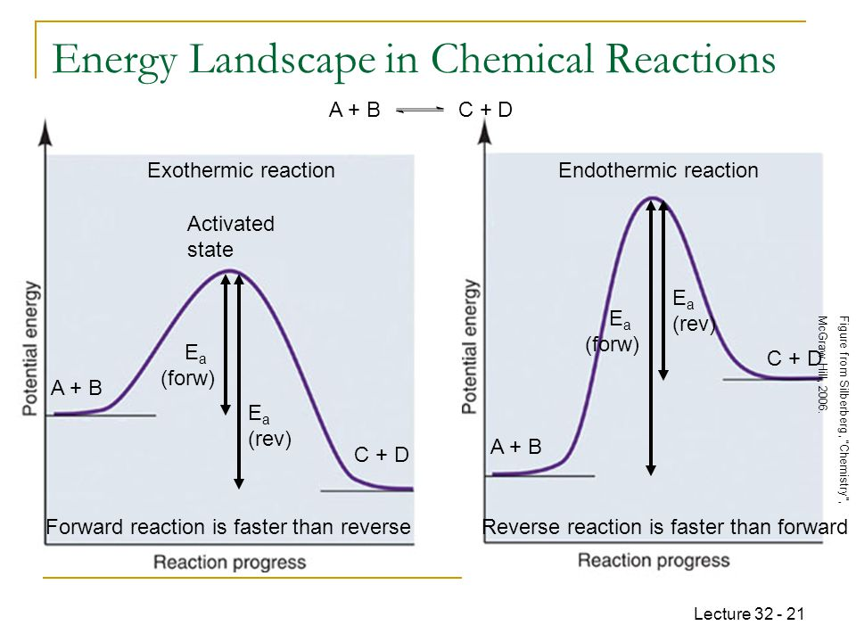 Energy Landscape in Chemical Reactions