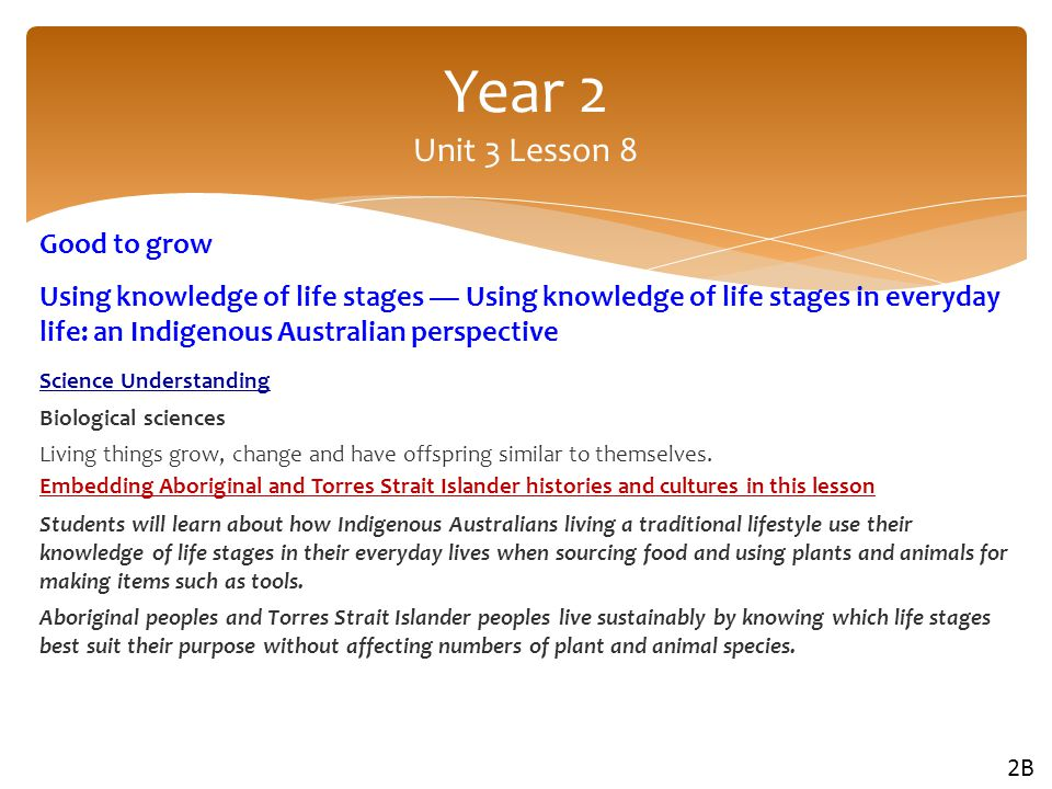 Year 2 Unit 3 Lesson 8 Good to grow