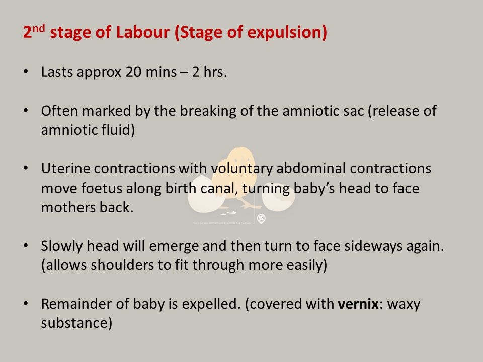 2nd stage of Labour (Stage of expulsion)