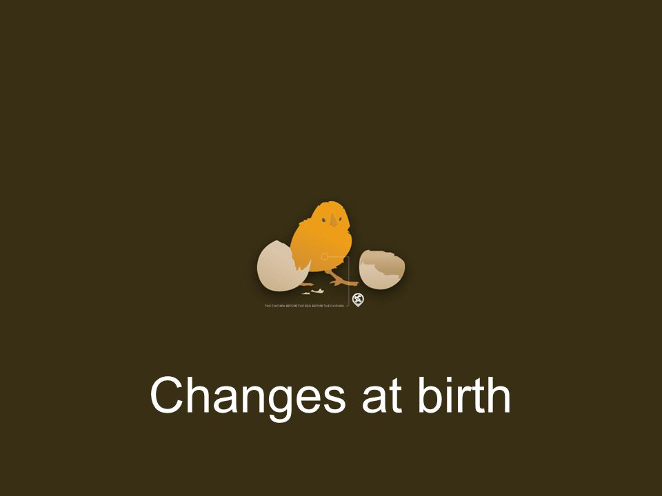 Changes at birth