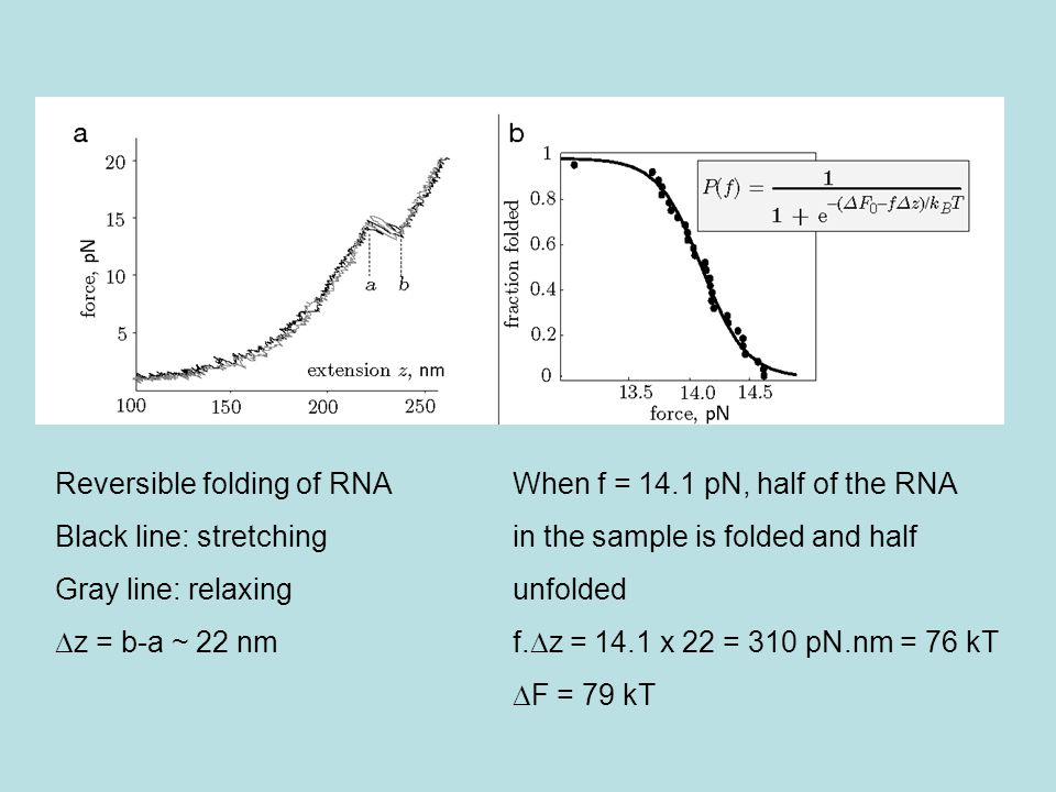 Reversible folding of RNA