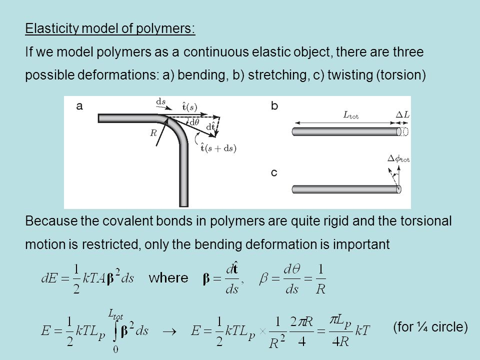 Elasticity model of polymers: