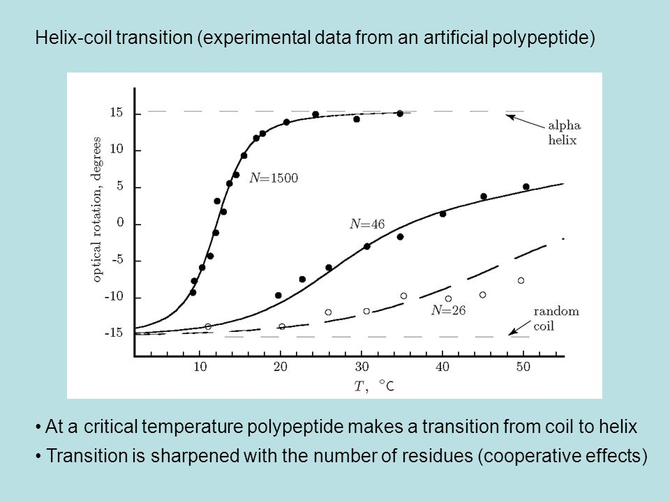 Helix-coil transition (experimental data from an artificial polypeptide)