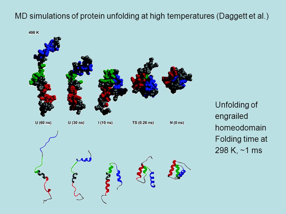 MD simulations of protein unfolding at high temperatures (Daggett et al.)