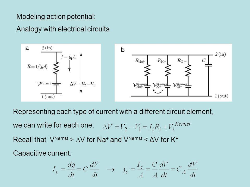 Modeling action potential: