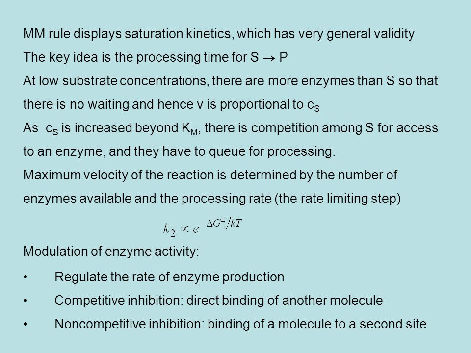MM rule displays saturation kinetics, which has very general validity