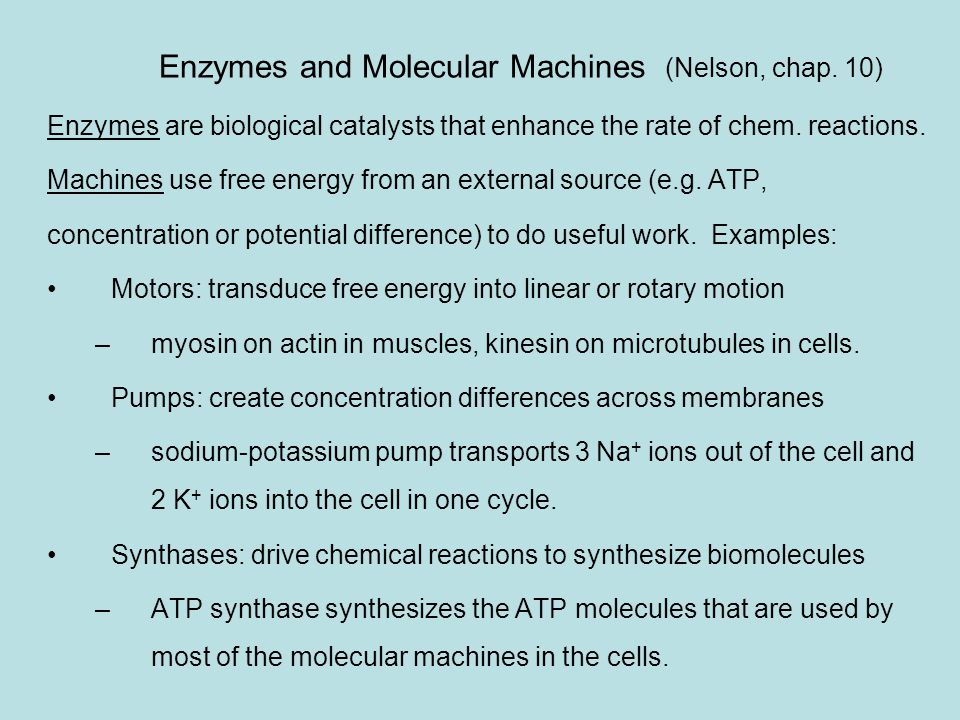 Enzymes and Molecular Machines (Nelson, chap. 10)