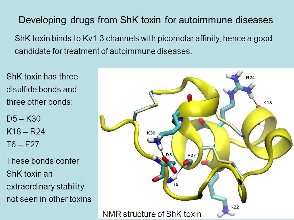 Developing drugs from ShK toxin for autoimmune diseases