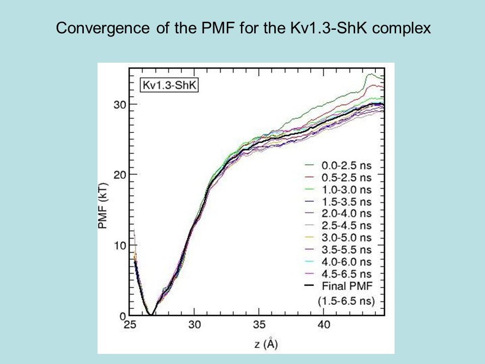 Convergence of the PMF for the Kv1.3-ShK complex