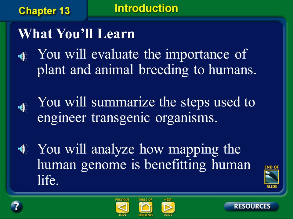 You will summarize the steps used to engineer transgenic organisms.