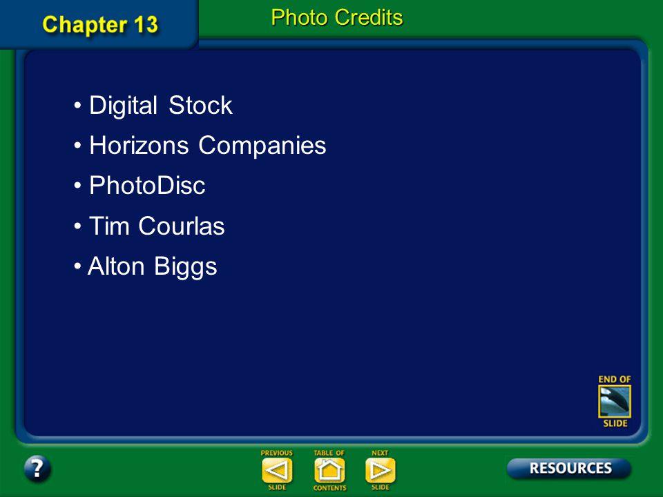 Digital Stock Horizons Companies PhotoDisc Tim Courlas Alton Biggs