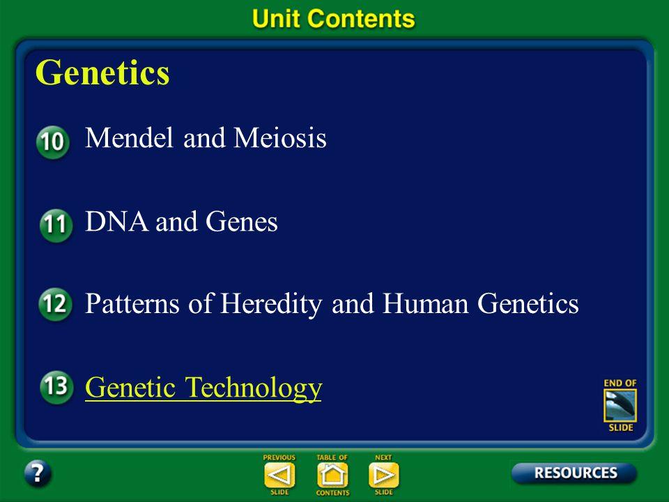Genetics Mendel and Meiosis DNA and Genes