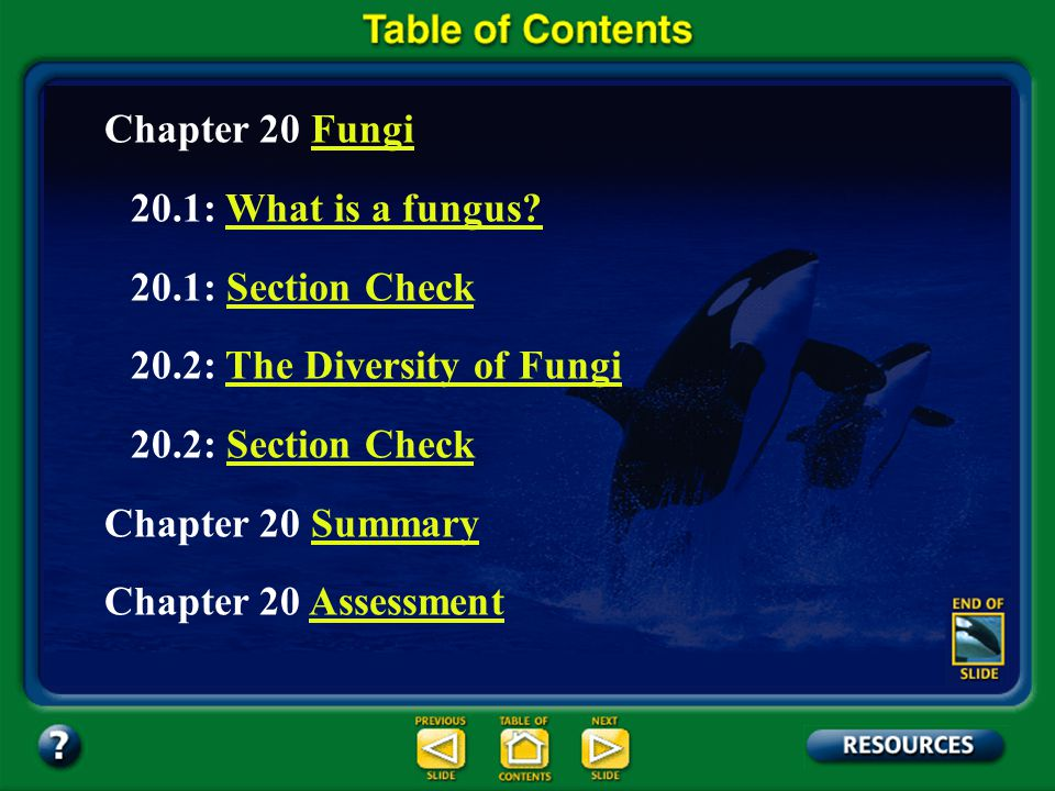 Chapter Contents – page ix