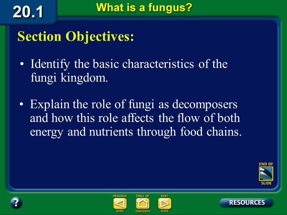 20.1 Section Objectives – page 529