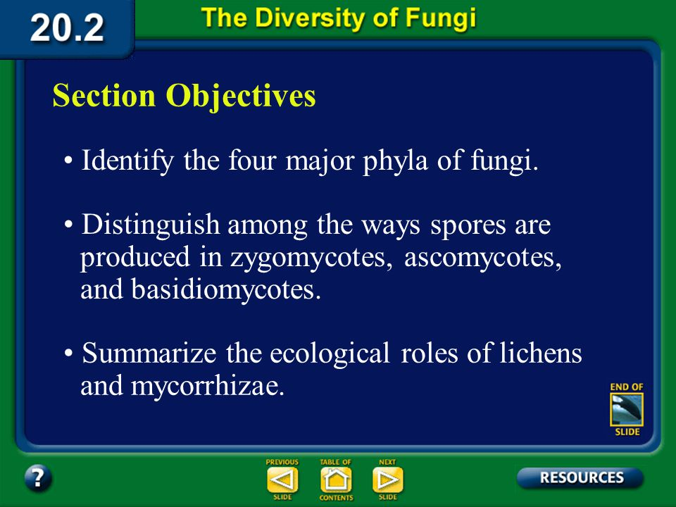 20.2 Section Objectives – page 535