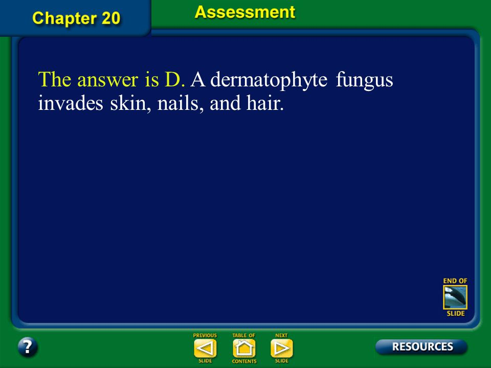 The answer is D. A dermatophyte fungus invades skin, nails, and hair.