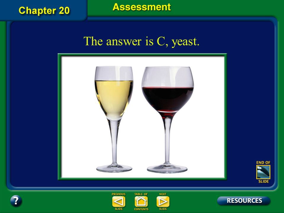 The answer is C, yeast. Chapter Assessment