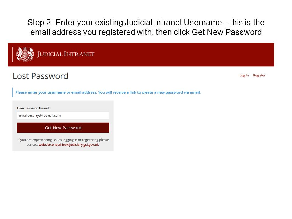 Step 2: Enter your existing Judicial Intranet Username – this is the email address you registered with, then click Get New Password