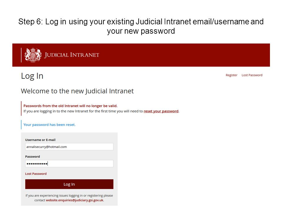 Step 6: Log in using your existing Judicial Intranet email/username and your new password