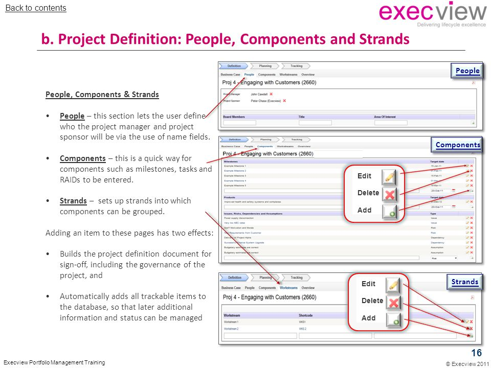 b. Project Definition: People, Components and Strands