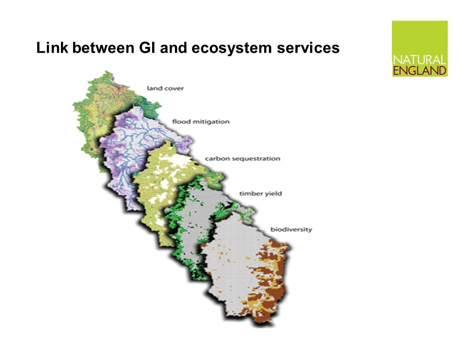Link between GI and ecosystem services