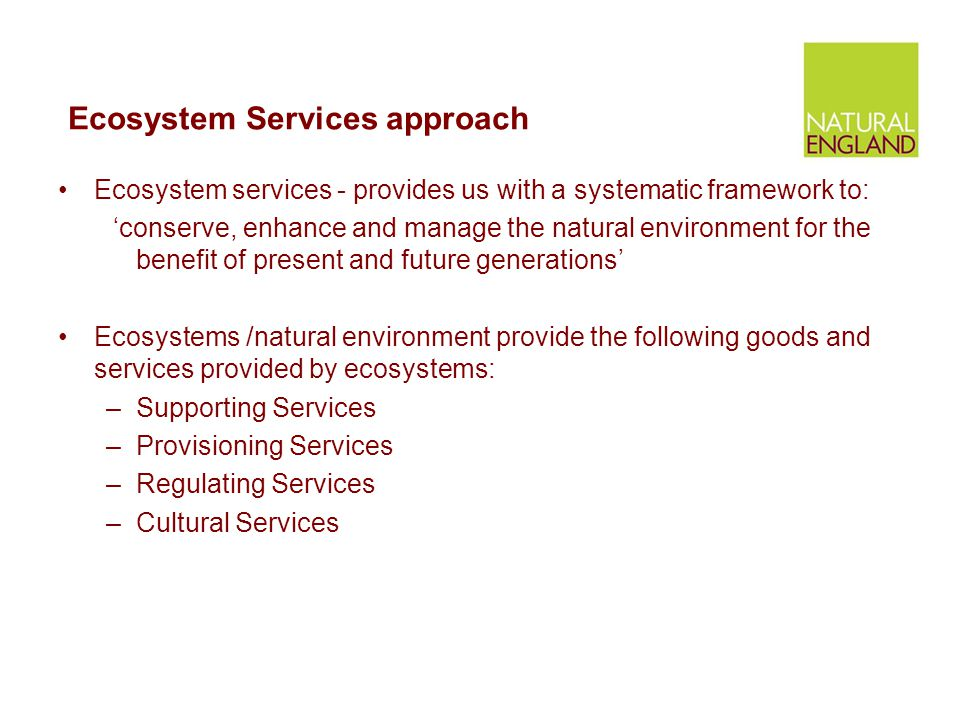 Ecosystem Services approach