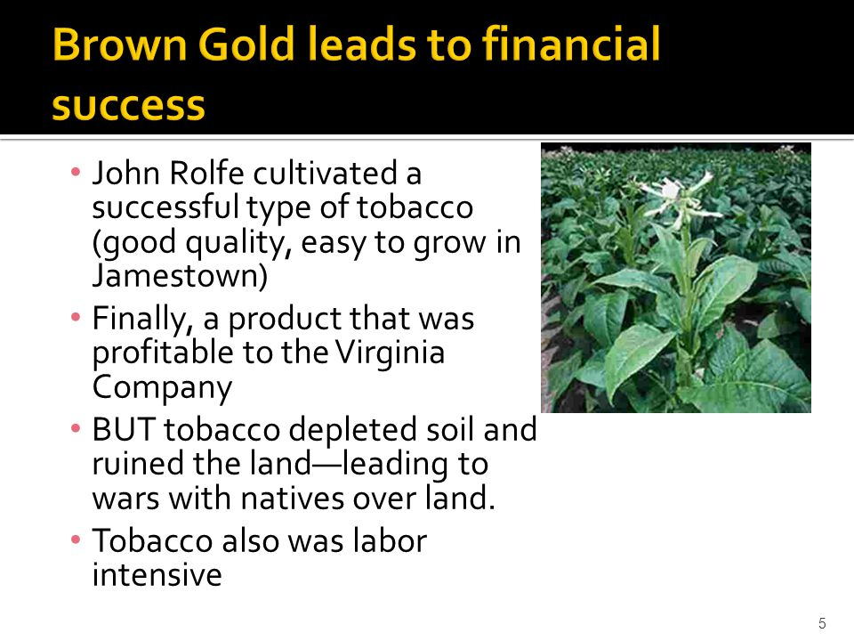 Brown Gold leads to financial success